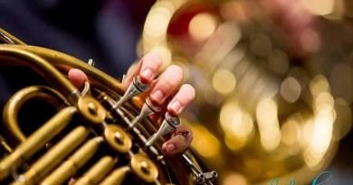 Berlin Philharmonic Names New Principal Horn - Last Row Music
