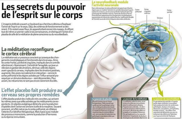 lasultane- magazine- La Sultane- Mag- Lasultanemag-sultanemag-cerveau-subconscient