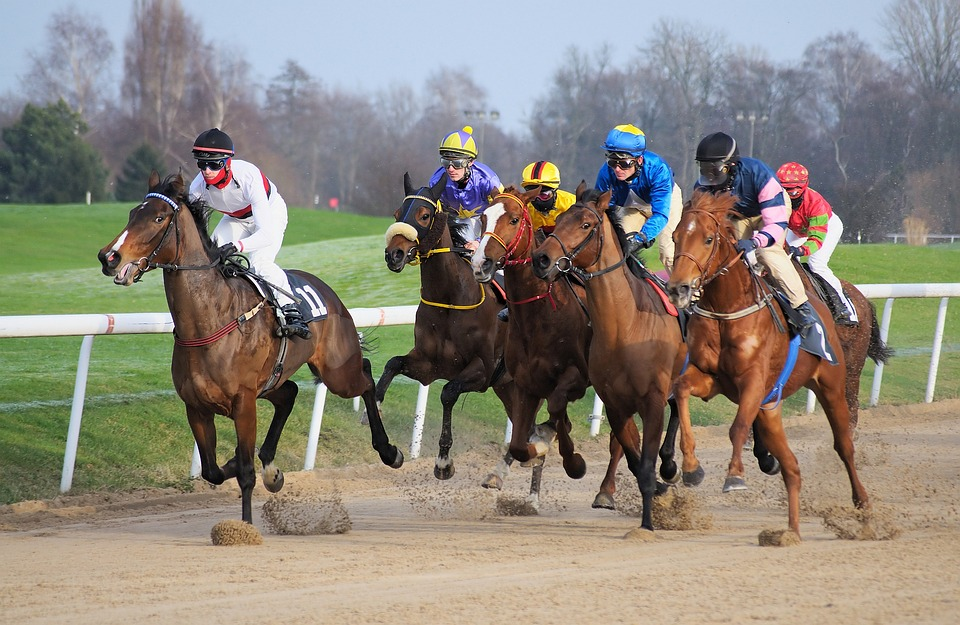 Race track las vegas horse betting best betting website free bets and parlays