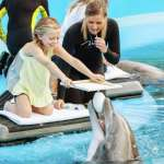 Sigfried & Roy's Secret Garden And Dolphin Habitat Discount Mirage Las Vegas