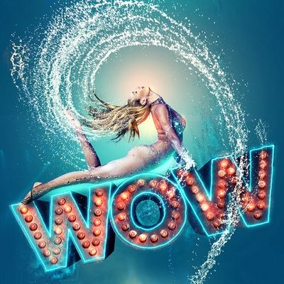 WOW The Vegas Spectacular Las Vegas Discount Tickets