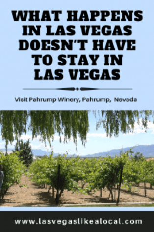Desert Wine Tasting, Pahrump Nevada
