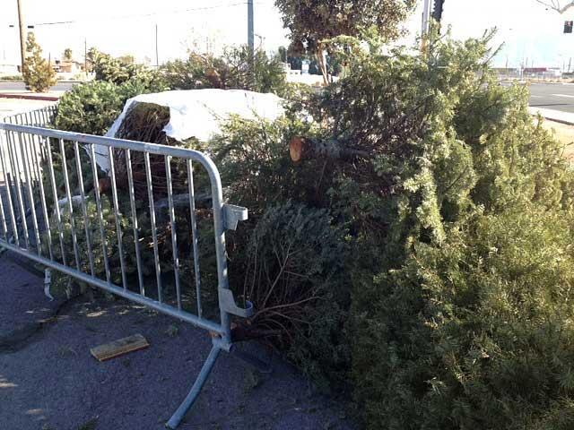 Tree_recycle_800_1544551994643.jpg