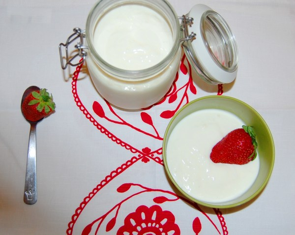 fare lo yogurt in casa