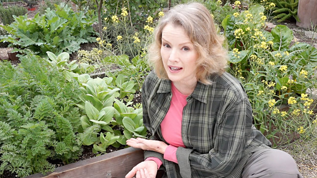 Kaye Kittrell in Late Bloomer