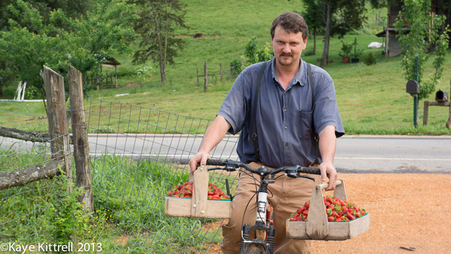 Mennonites living a meaningful life in Tennessee & the availability of fresh produce & dairy