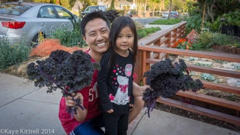 Growing Parkway Kale-Steve