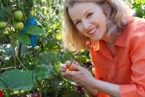Growing Heirloom Tomatoes Part 3!