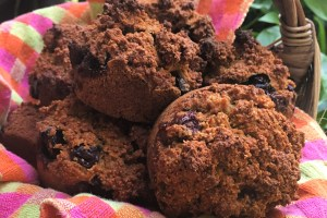 Paleo Poppyseed Blueberry Banana Ginger Muffins