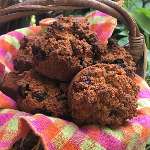 Paleo Poppyseed Blueberry Banana Muffins