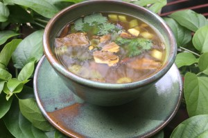 Hot & Spicy Root Soup with Wild Mushrooms
