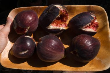 Best fig jam recipe - big figs