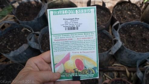 Urban Garden Improvisation - seed pack