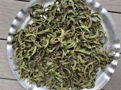 to show dried lemon verbena