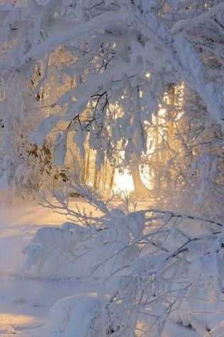 10 choses hiver 19