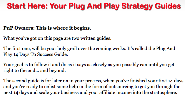 Plug and Play Niche Cash Guides