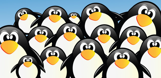 Google Penguin 3.0 Update: What you need to know about Google's latest algorithm antics