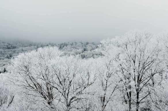 Winter_13_0907