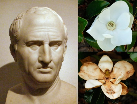 Cicero, sensual pleasures and death