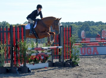Jumping at the same equestrian meet.