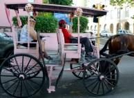 Touring Nassau in a horse-drawn carriage.