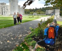 Visitors getting just the right photo of themselves at Ashford Castle.