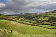 Farmland on the Dingle Peninsula, County Kerry.