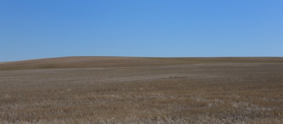 Southeastern Wyoming rangeland. The country side rolls on for miles, and the open space is breathtaking.