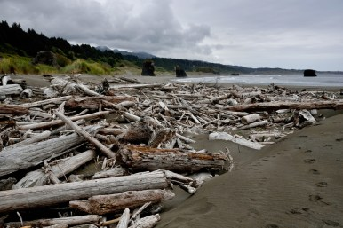 Some beaches show off scattered driftwood, and others are mostly clear.
