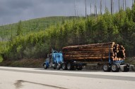Logging is active mostly on private lands. This photo shows a truck loaded with second-growth timber with private forestland in the background.