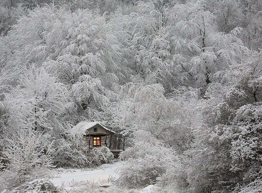 maison-cabane en hiver