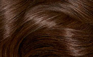 Chocolate Brown Hair Color Chart