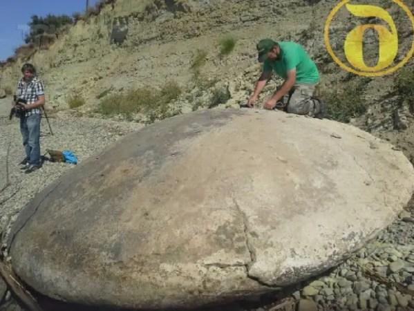 UFO Groups Found Alien Spacecraft That Crash Landed On ...