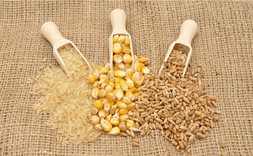 Rice, wheat and corn