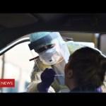 Coronavirus warning: as much as 6 months earlier than UK returns to regular – BBC Information
