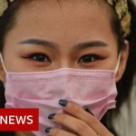 Coronavirus: World should put together for pandemic, says WHO – BBC Information