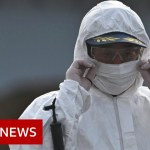 Coronavirus: China expels reporters for article it deemed racist – BBC Information