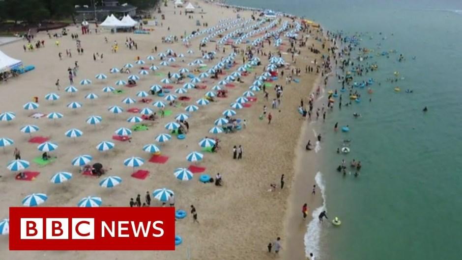 Coronavirus: Protecting the virus at bay on S Korea's seashores – BBC Information