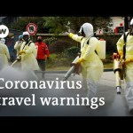Coronavirus: What does WHO's 'world well being emergency' imply? | DW Information