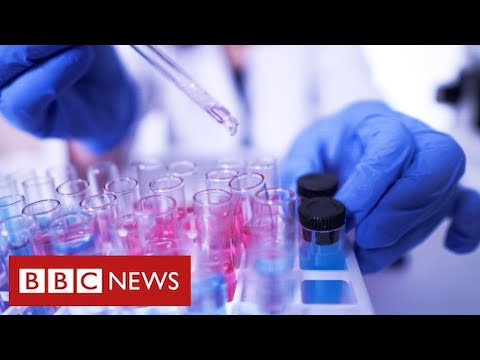 New assessments which detect coronavirus in 90 minutes to be rolled out in England  – BBC Information