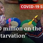 Coronavirus in Africa: Is the fallout worse than the illness? | COVID-19 Particular