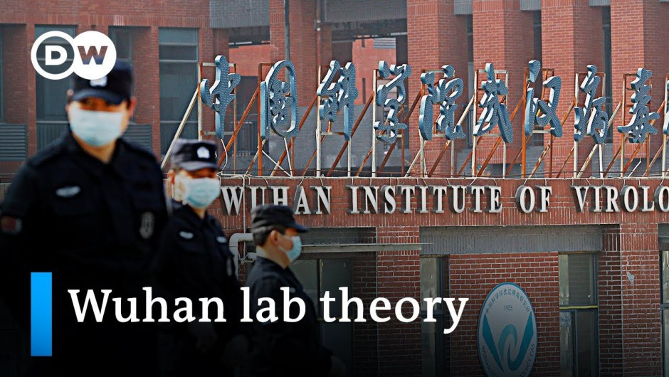 What's behind the resurgence of the Wuhan lab concept? | DW Information