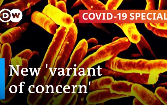 How harmful is the Indian variant of the coronavirus? | COVID-19 Particular