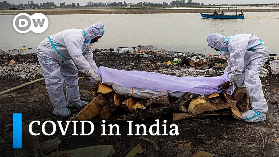 India: Our bodies of suspected COVID-19 victims wash up on Ganges riverbanks | DW Information