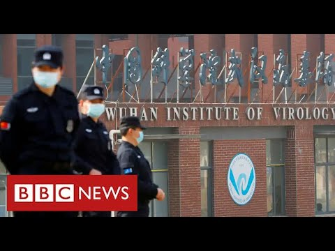 President Biden orders evaluate of claims Covid got here from Chinese language lab – BBC Information
