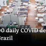 Coronavirus variant results in surging loss of life toll in Brazil | DW Information