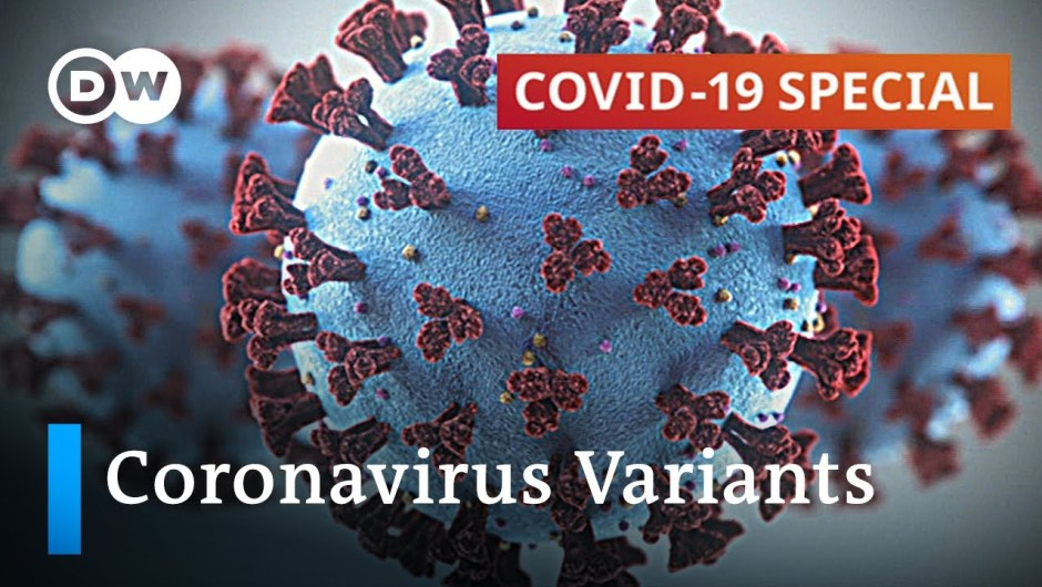 How one can cease the unfold of latest coronavirus variants? | COVID-19 Particular
