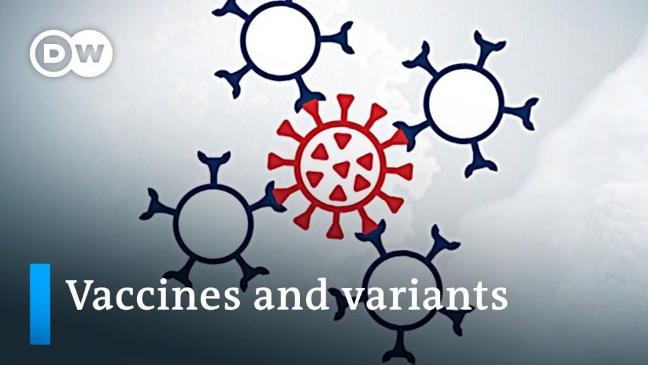 Vaccine efficacy unsure as coronavirus variants unfold | DW Information