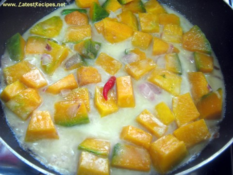 squash_in_coconut_milk_1