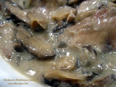 pan_fried_chicken_in_mushroom_sauce